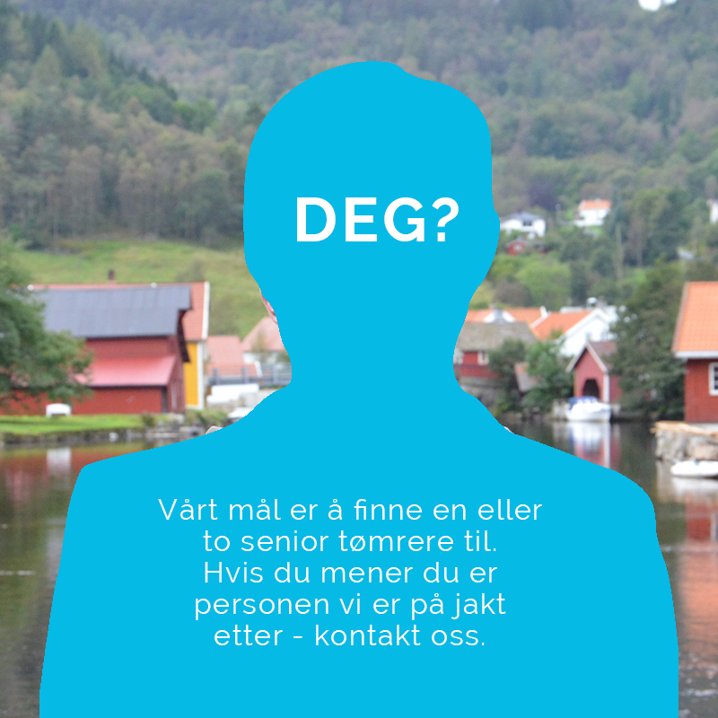 Lærling eller senior?